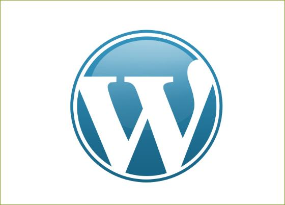 Wordpress Sicherheitsupdate All in One SEO Pack